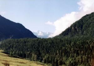 Вид на г.Белуха