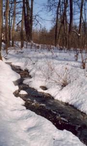 Ручей зимой
