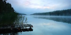 Лето 2013года, июнь. Озеро Долгое в Тверской области - сосновый бор, чистейшая вода, грибы-ягоды!!!!